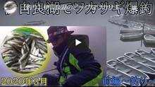 さとーさん 3月某日の伊自良湖ワカサギ釣りの動画 ↑のワカサギ釣りのボタンクリックで動画ページに移動 下の方でご覧になれます。