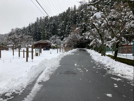 道路は除雪