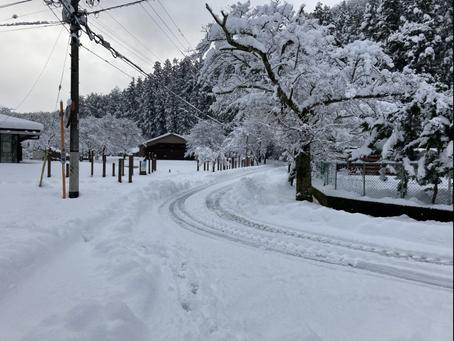 1/2から1/3 現状も降雪中ですので ワカサギ釣りを中止します