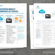 Workspot Collateral Template