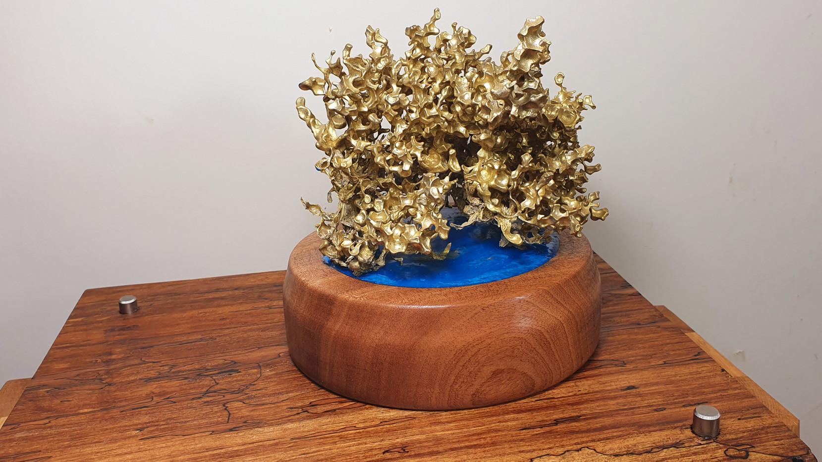 Brass Coral