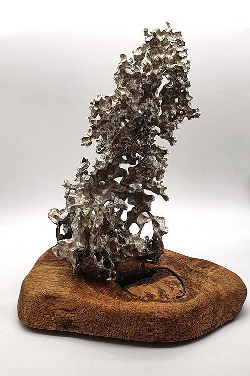 Aluminium Coral Atop a Brown Oak Base