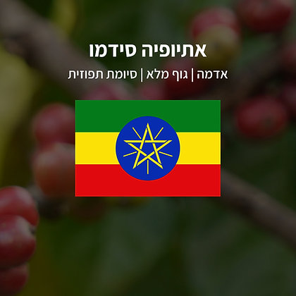 קפה חד זני | אתיופיה סידמו