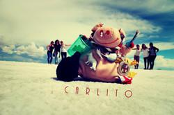carlito.jpg