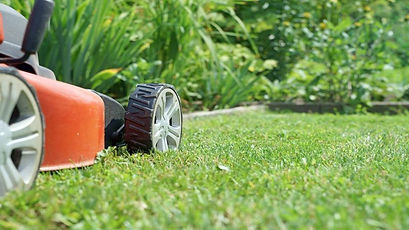mowing lawn_close-up.jpg