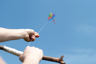 Kite for Wix website.png