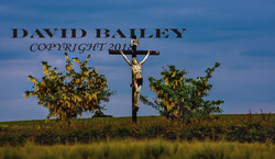 Crucifix on the Somme