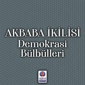 Akbaba İkilisi | Demokrasi Bülbülleri