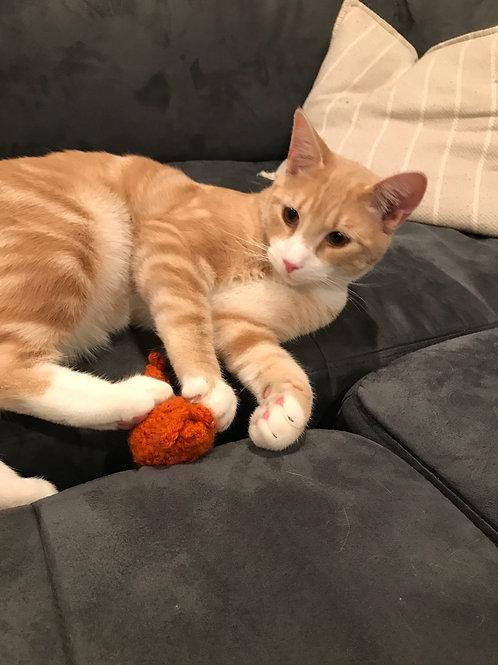 Catnip Toys (Oscar Approved)