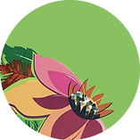logo-jardinerie-pepiniere-courpiere.png