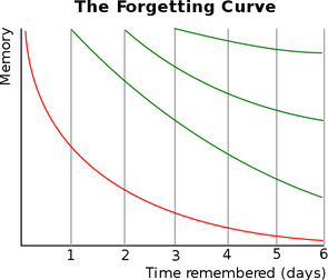 554px-ForgettingCurve.svg.png