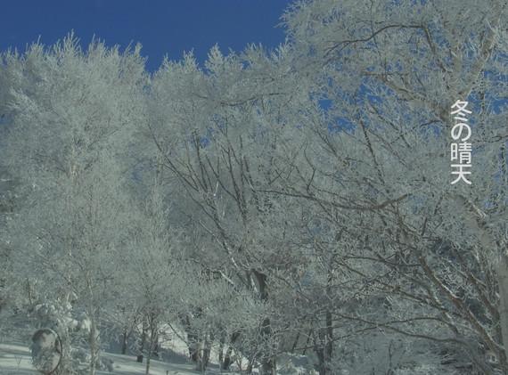 冬の.jpg