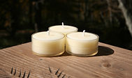 3 Beeswax Tea Lights A-Toritani.JPG
