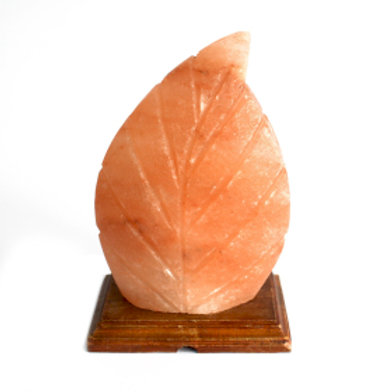 Crafted Salt lamp - Fern 3x5x7 inch