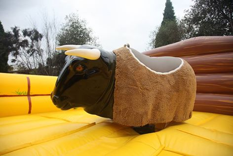 mechanical bull.jpg