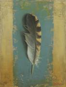 Single Feather.jpg