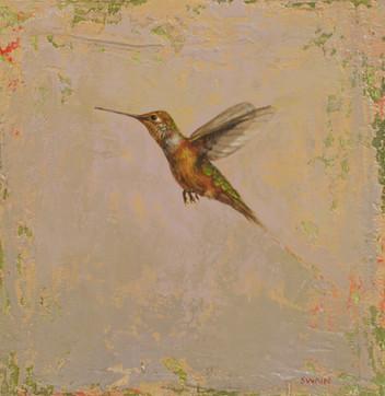 Hummingbird Flight 2