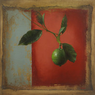 Lime On Red