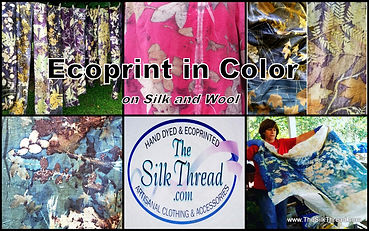 Ecoprint in Color.jpg