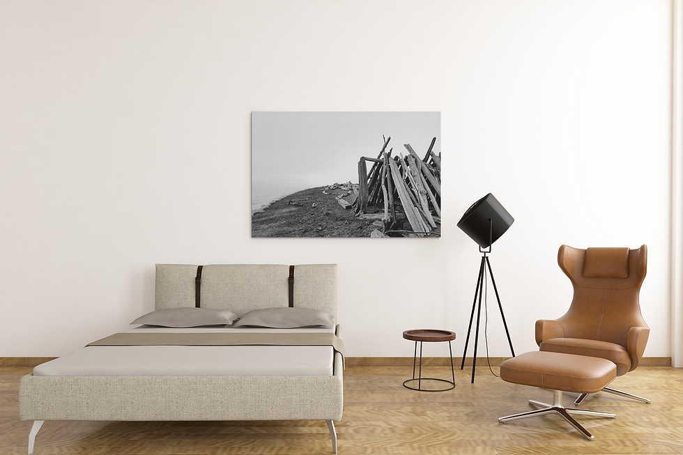 Driftwood fort canvas product shot.png