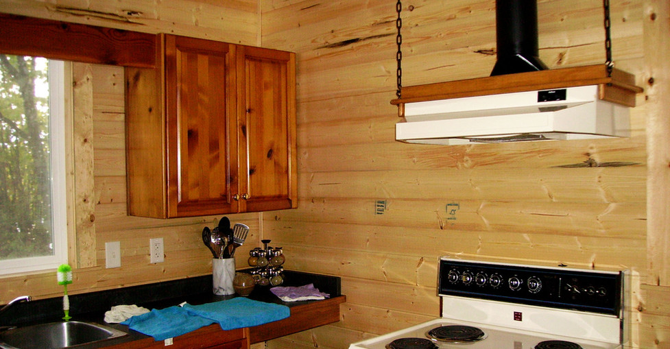 Renovated Cabin - Kitchen