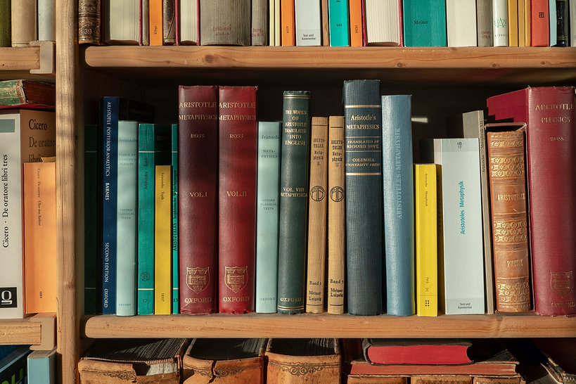 Part_of_a_bookshelf_containing_books_by_