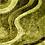 Thumbnail: Green Shag Waves