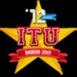 RODEIO DE ITU 2018 -DENIS EXCURSOES
