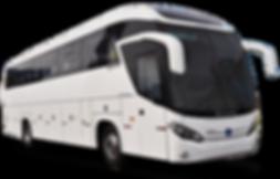 Folianopolis  2017 -Denis Excursões