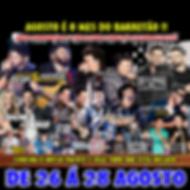 DENIS EXCURSOES BARRETOS 2016 2-FINAL DE SEMANA