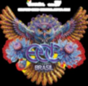 TRANSPORTE EDC