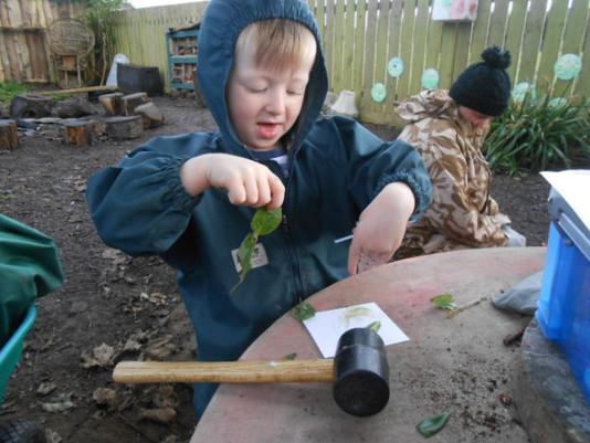 Bush Craft & Skills