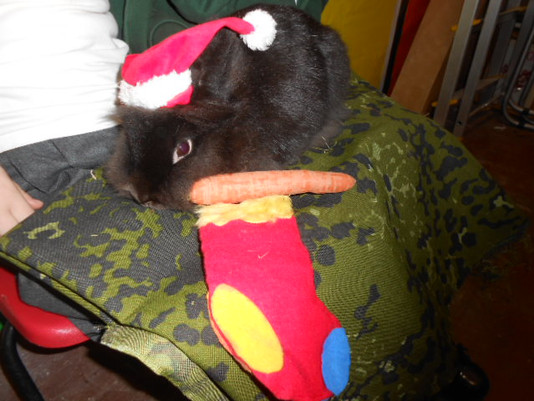 Winnie Butter-Jelly has a Stocking