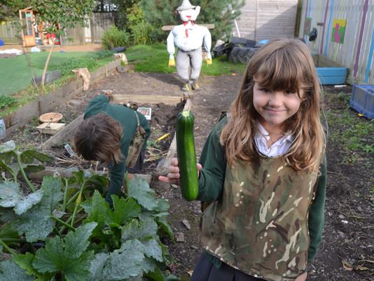 1,2,3 Heave! Giant Vegetables!