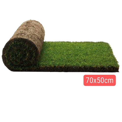 Mini-Repuesto Pasto Natural 70x50cm