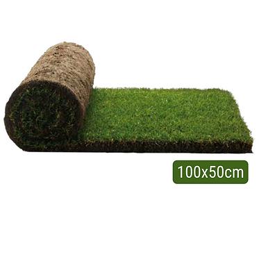 Repuesto Pasto Natural 100 x 50cm