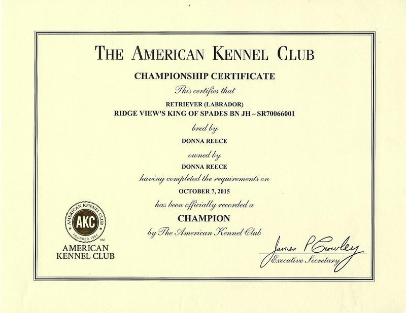 Spades CH Certificate
