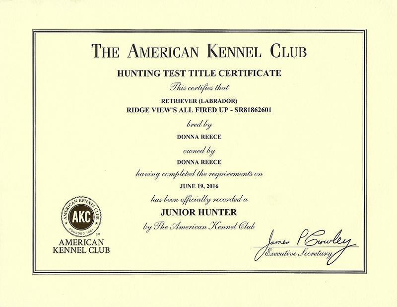 Fire JH Certificate