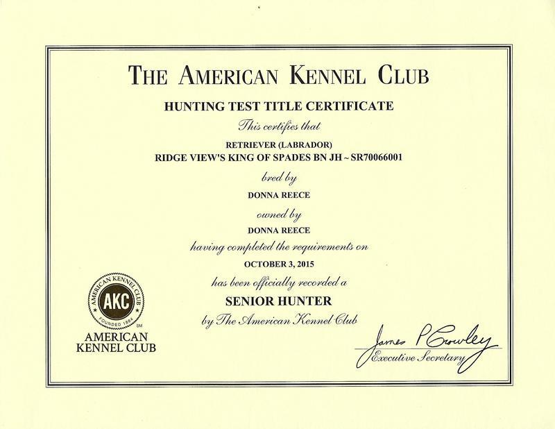 Spades SH Certificate