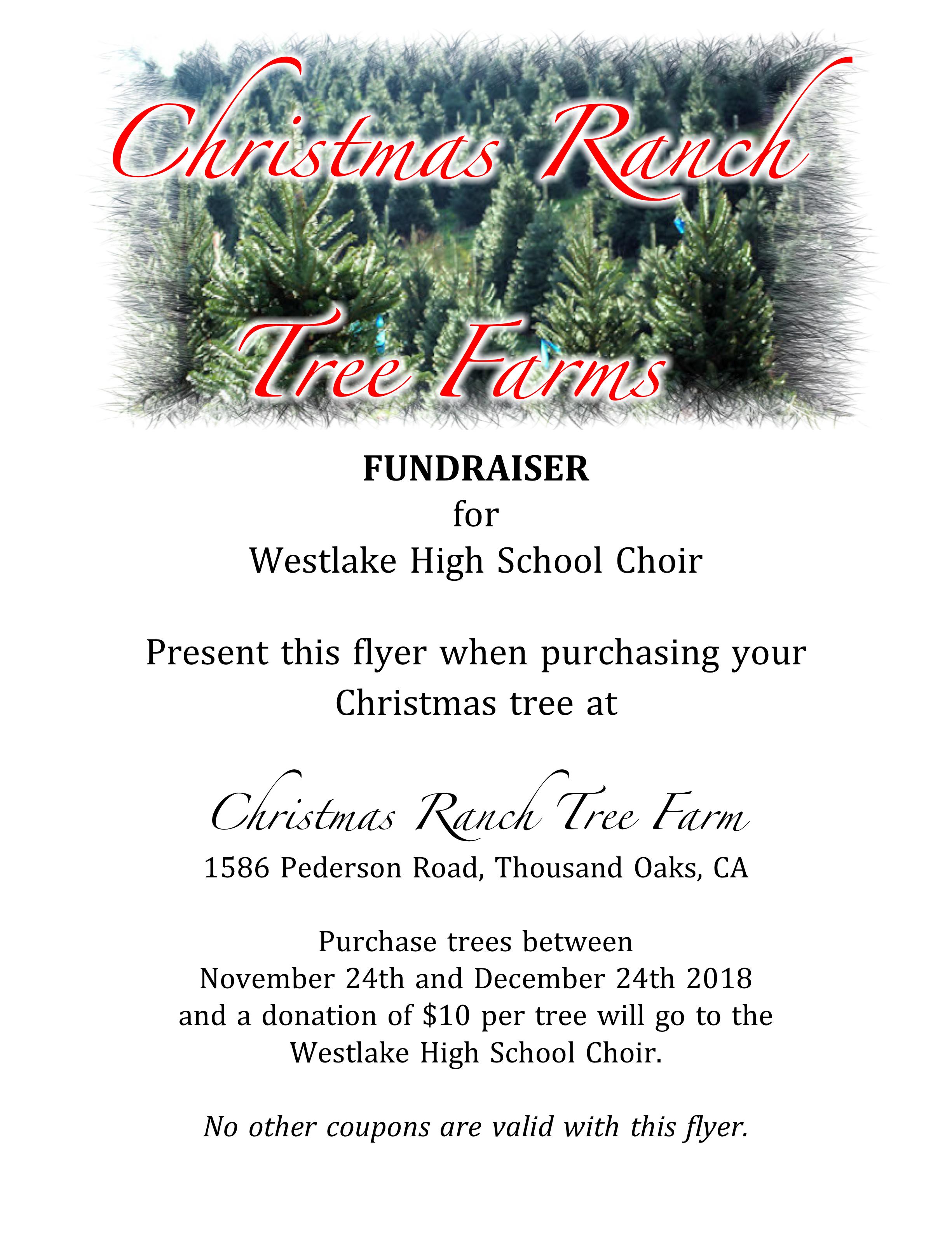 Christmas Fundraiser Flyer.Christmas Tree Fundraiser
