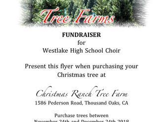 Christmas Tree Fundraiser!