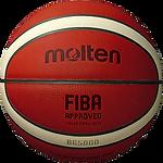 38B9000101_mb100-basketbalovy-mic-molten