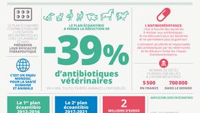 Les infographies du ministère de l'agriculture