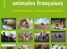 Les filières animales françaises : Caractéristiques, enjeux et perspectives [livre]
