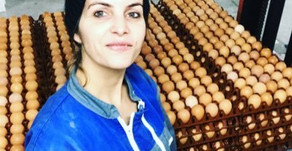 Une éleveuse de poules pondeuses vous explique son métier sur Youtube