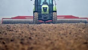 Changement climatique : les sols agricoles, de véritables pompes à carbone