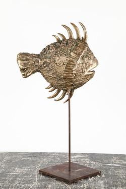 SAN PIETRO FISH