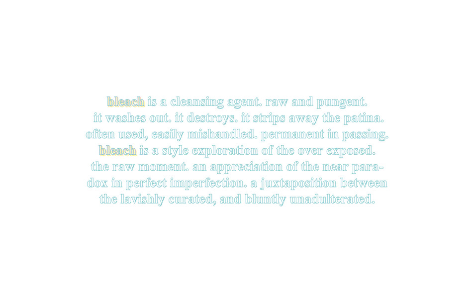 BLEACH2.jpg
