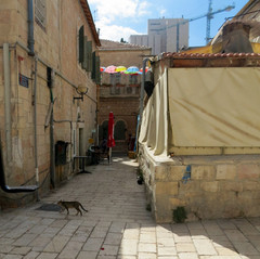 ליד כיכר החתולות בירושלים