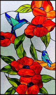 ויטראז' יונק הדבש בחלון בדירה בקיבוץ